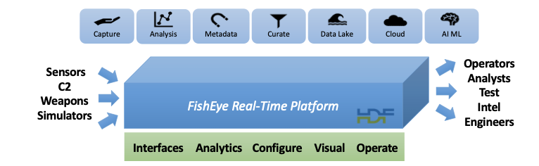 Figure 1 - FishEye Real-Time Platform